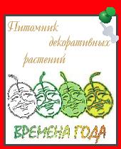 Питомник декоративных растений.